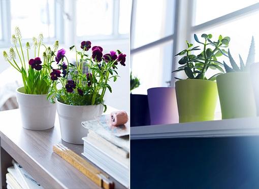 Ikea plantas ikea plantas flores muy mucho tres macetas - Plantas de plastico ikea ...