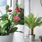 plantas artificiales ikea