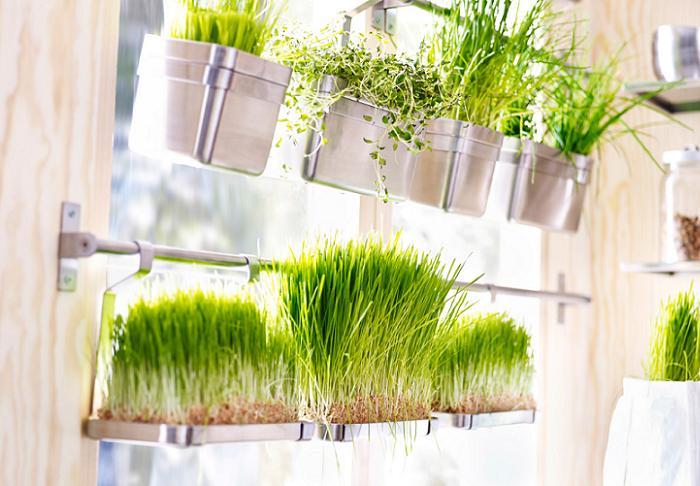 especiero ikea plantas