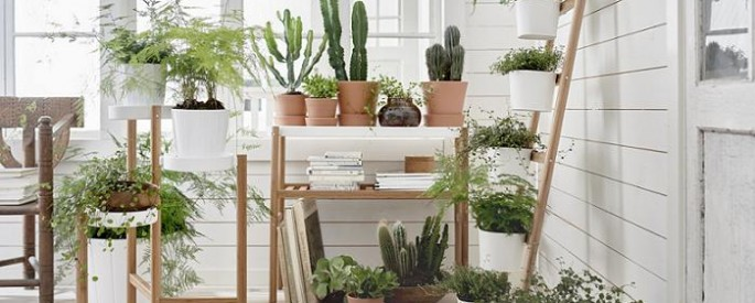 Plantas ikea archives mueblesueco for Jardin ikea 2016