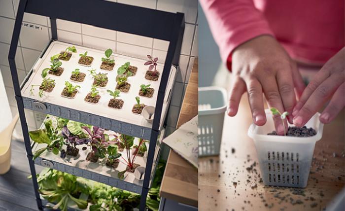 ikea indoor gardening huerto en casa