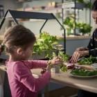 indoor gardening ikea invernaderos